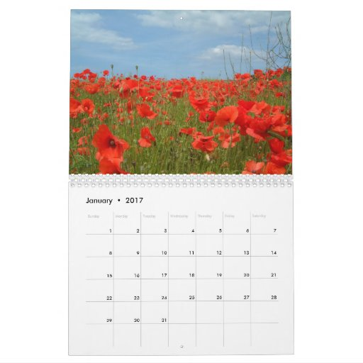 Calendario 2008 de la amapola - modificado para