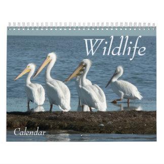 Calendario 2008 de la fauna. - Modificado para req