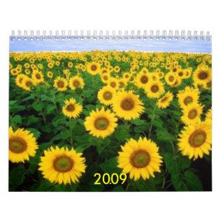 Calendario, 2009
