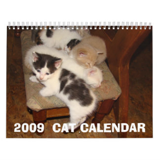 CALENDARIO 2009 DEL CAT
