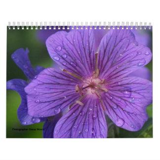 Calendario 2009 photgraphed por Stacey Morris