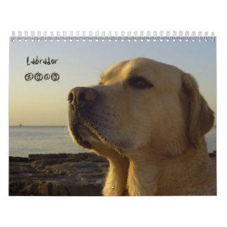 Calendario 2010 del labrador retriever