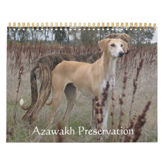 Calendario 2011 de Azawakh
