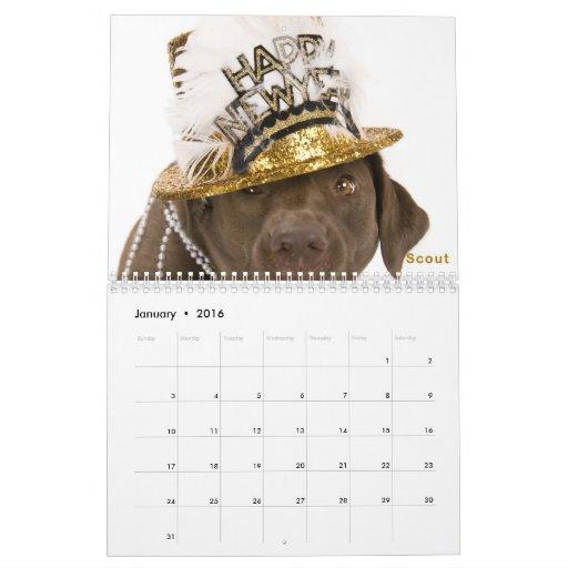 Calendario 2011 de DaisyCares