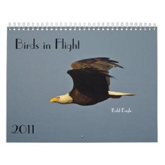 Calendario 2011 de los pájaros en vuelo