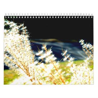 Calendario 2012 de la fotografía