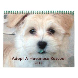 Calendario 2012 de los perritos del rescate de Hav