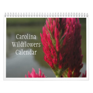 Calendario 2012 de los Wildflowers de Carolina