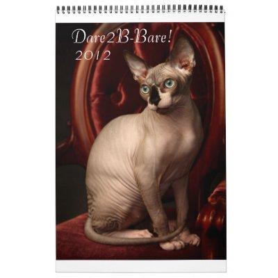 Calendario 2012 de Sphynx