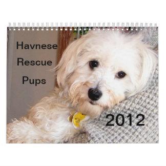 Calendario 2012 del rescate del perrito de Havanes