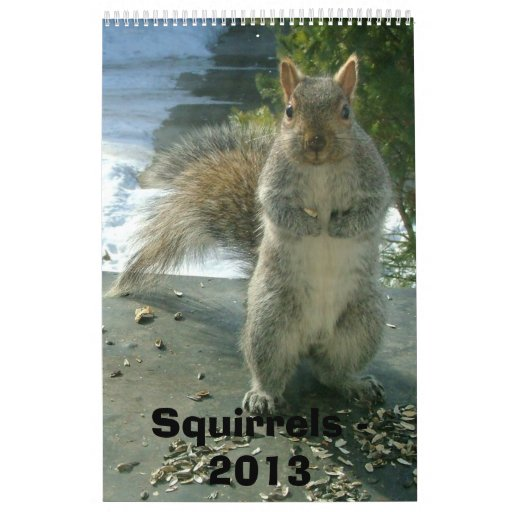 Calendario 2013 de la ardilla