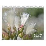 Calendario 2013 de la foto
