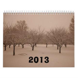 Calendario 2013 de las fotos del invierno