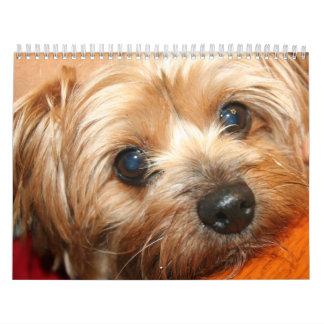 Calendario 2013 de las imágenes de la diversión de