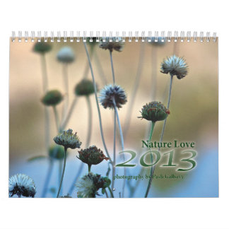 Calendario 2013 del amor de la naturaleza