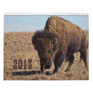Calendario 2013 del búfalo