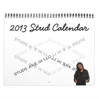 Calendario 2013 del perno prisionero