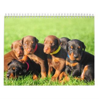 Calendario 2013 del perrito del Doberman