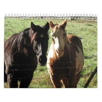 Calendario 2013:  Dos vecinos equinos amistosos