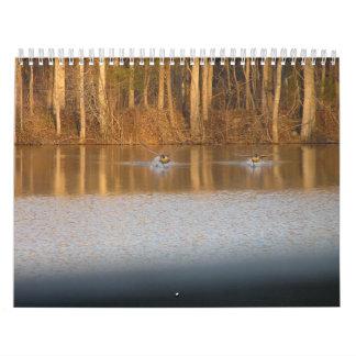 Calendario 2013:  Gansos en vuelo