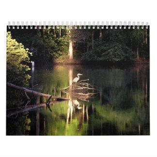 Calendario 2013: Garza en el lago