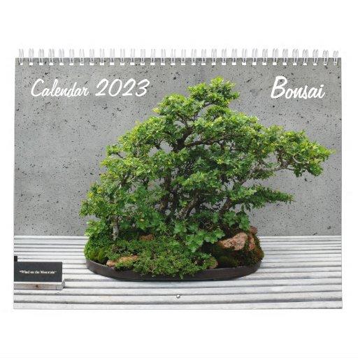 Calendario 2014 con los bonsais
