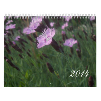 Calendario 2014 de la naturaleza