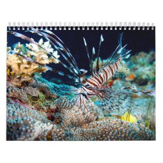Calendario 2014 del mar de coral