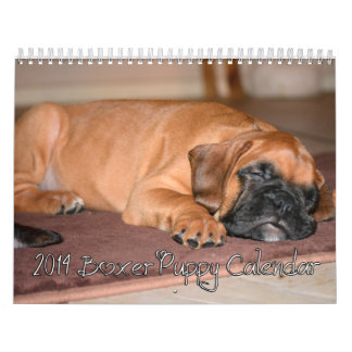 Calendario 2014 del perrito del boxeador