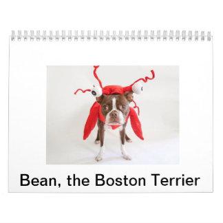 Calendario 2015 de Boston Terrier