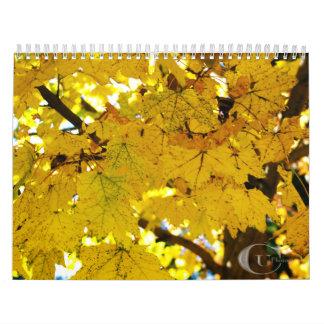 Calendario 2015 de la fotografía del CU