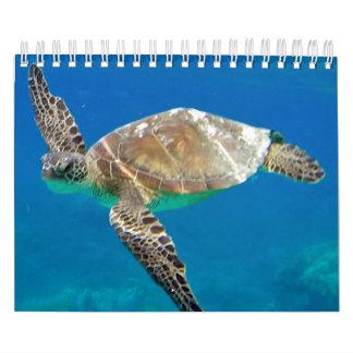 Calendario 2015 de las tortugas de Hawaii