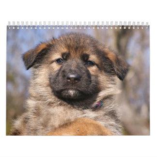 Calendario 2015 del perrito del pastor alemán