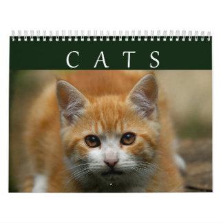 Calendario 2016 del gato