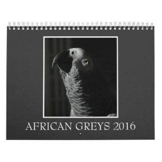 Calendario 2016 del loro del gris africano de