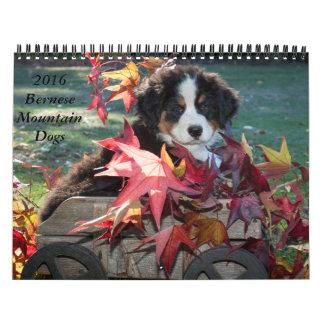 Calendario 2016 del perro de montaña de Bernese