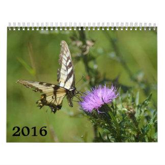 calendario 2016, mariposas y floraciones
