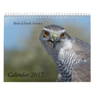 Calendario 2017 - Pájaros de Norteamérica