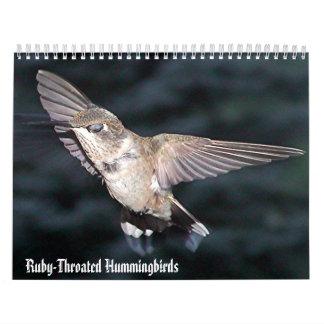 Calendario 3 del colibrí