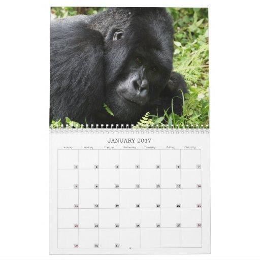 Calendario africano 2013 de la fauna