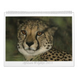 Calendario africano de la fauna