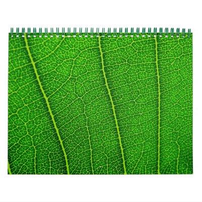 Calendario al azar de la naturaleza