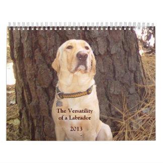 Calendario amarillo del laboratorio - 2013