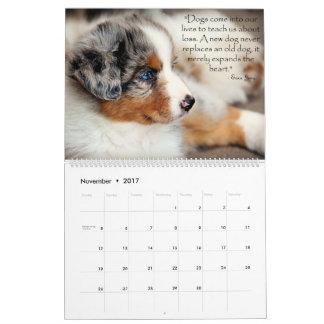 Calendario australiano de los perritos del pastor
