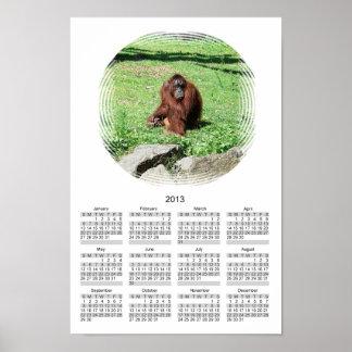 Calendario cabelludo rojo marrón 2013 del orangutá poster