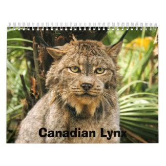 Calendario canadiense del lince, lince canadiense