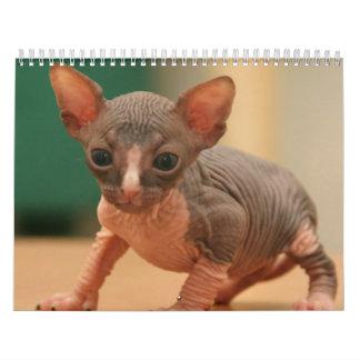 Calendario con los gatitos lindos de un sphynx