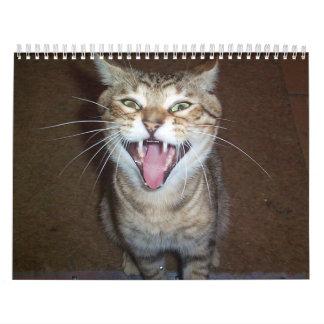 Calendario de 2008 gatos, ningunos nombres