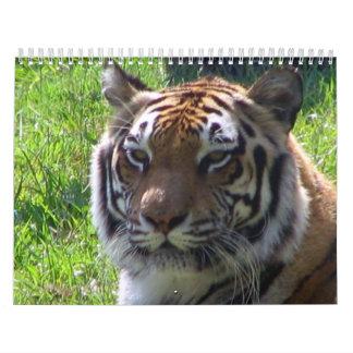 Calendario de 2010 animales
