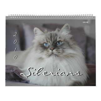 Calendario de 2010 de los siberianos gatos y de lo